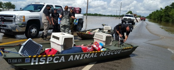Animal_Rescue_750x300px